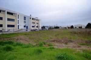 Земельный участок 10500 m² в Салониках