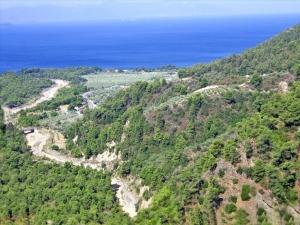 Земельный участок 7500 m² Эвия