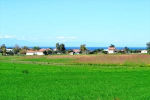 Земельный участок 495 m² на Кассандре (Халкидики)