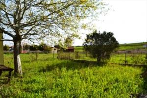 Земельный участок 600 m² в Халкидиках