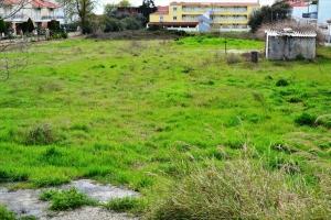 Земельный участок 5300 m² на Кассандре (Халкидики)
