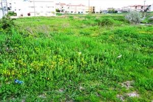 Земельный участок 660 m² на Кассандре (Халкидики)