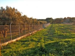 Земельный участок 600 m² в Аттике