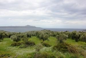 Земельный участок 5900 m² на Крите