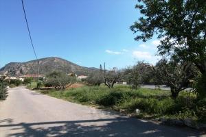 Земельный участок 550 m² на Крите