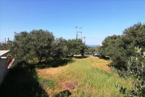 Земельный участок 650 m² на Крите