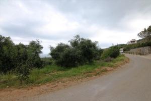 Земельный участок 3000 m² на Крите