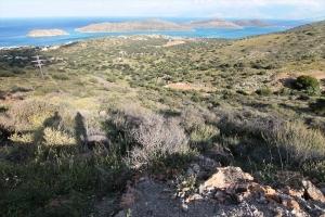Земельный участок 2762 m² на Крите