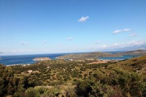 Земельный участок 12299 m² на Крите