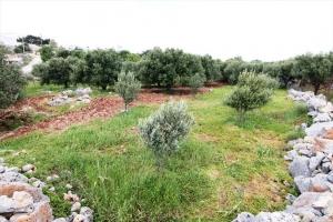 Земельный участок 486 m² на Крите