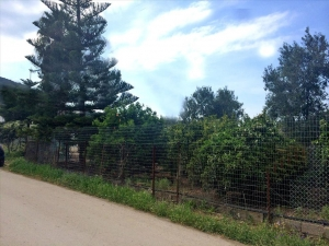 Земельный участок 1614 m² на Пелопоннесе