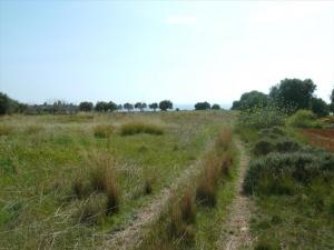 Земельный участок на Пелопоннесе