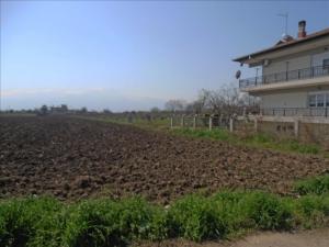 Земельный участок 2000 m² на Олимпийской Ривьере