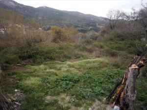 Земельный участок 320 m² на Тасосе