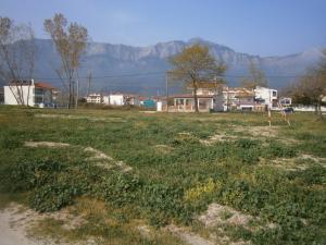 Земельный участок 2772 m² на Тасосе