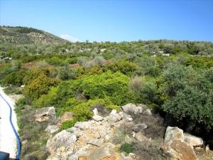 Земельный участок 9200 m² на Тасосе