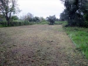 Земельный участок 610 m² на Тасосе