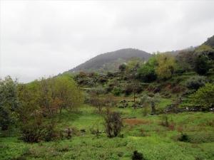 Земельный участок 3763 m² на Тасосе