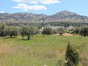 Земельный участок на Родосе