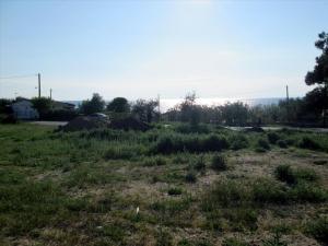 Земельный участок 880 m² на Тасосе