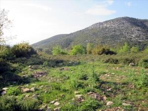 Земельный участок 4500 m² на Тасосе