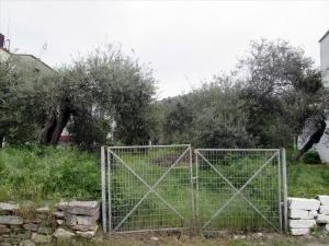 Земельный участок 1100 m² на Тасосе