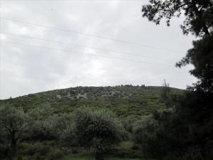 Земельный участок 6000 m² на Тасосе