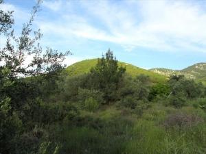 Земельный участок 1214 m² на Тасосе