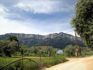 Земельный участок 450 m² на Тасосе