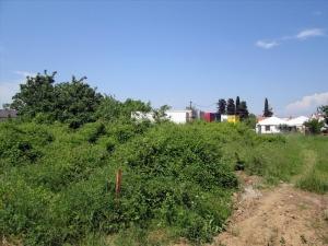 Земельный участок 716 m² на Тасосе