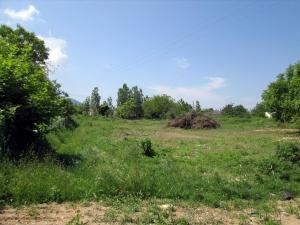 Земельный участок 1400 m² на Тасосе