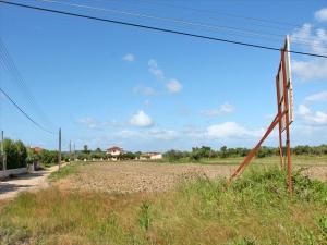 Земельный участок 12200 m² на Пелопоннесе