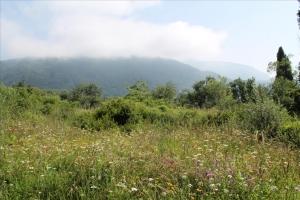 Земельный участок 1200 m² на о. Корфу