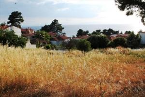 Земельный участок 1270 m² на Кассандре (Халкидики)