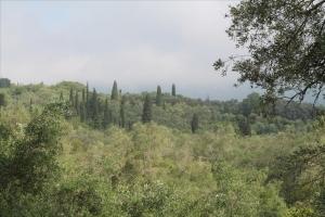 Земельный участок 4500 m² на о. Корфу