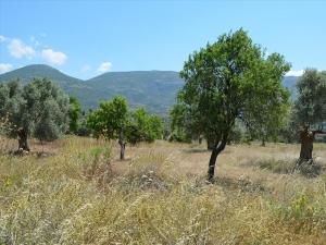 Земельный участок 22000 m² Эвия