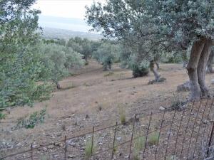 Земельный участок 680 m² Эвия