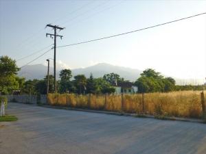 Земельный участок 5859 m² на Олимпийской Ривьере