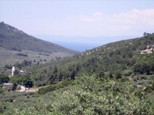 Земельный участок 1000 m² на Тасосе
