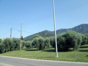 Земельный участок 1137 m² на Тасосе