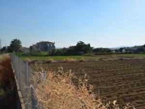 Земельный участок 1300 m² Эвия