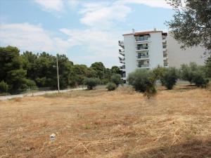 Земельный участок 1400 m² на Пелопоннесе