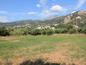 Земельный участок 5800 m² на Пелопоннесе