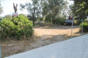 Земельный участок 4300 m² на о. Корфу