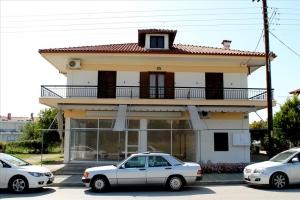 Бизнес 412 m² на Ситонии (Халкидики)