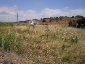 Земельный участок 1030 m² в Халкидиках