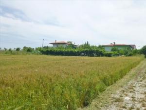 Земельный участок 700 m² на Олимпийской Ривьере