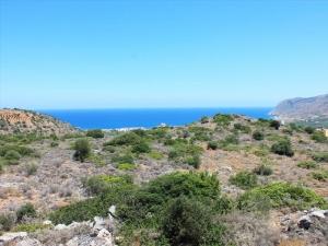 Земельный участок 4006 m² на Крите