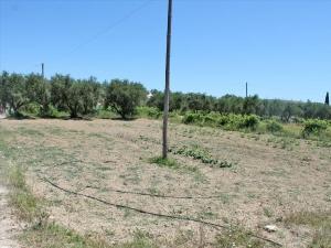 Земельный участок 700 m² о. Закинф