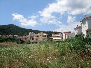 Земельный участок 3000 m² в Кавале